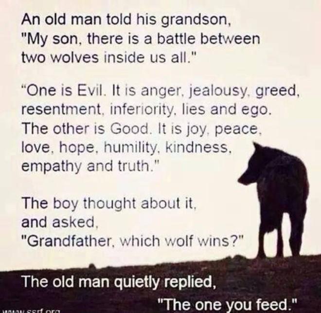 Two+wolves_6100f3_6353435.jpg